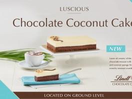 FA_LIND-0891B Dark Coconut Cake Digital Imagery Southgate-900x600